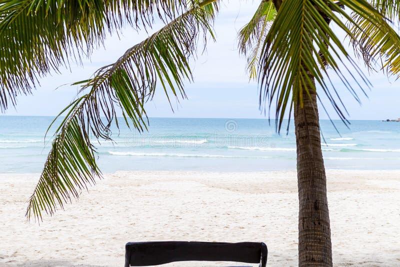 在不尽的水海洋的一个热带棕榈树视图的下沙滩美好的白色沙子理想的天堂休息假期 免版税库存照片