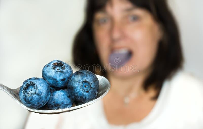 在不锈的匙子的蓝色越桔 库存照片