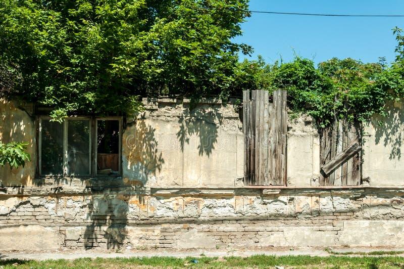 在与倒塌的用树增殖比盖的屋顶和残破的窗口的地震破坏拆毁的小老和被放弃的房子 免版税库存图片