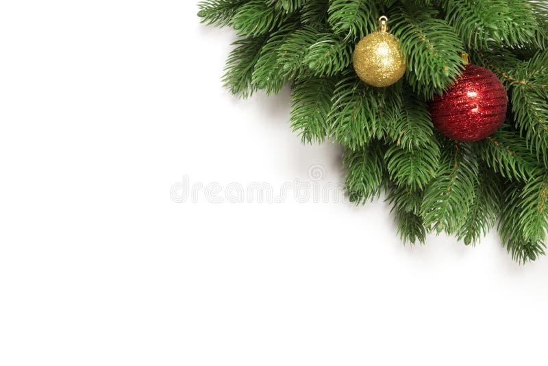 在与拷贝空间的白色背景隔绝的圣诞树分支文本的 与圣诞节玩具球和冷杉球果的冷杉 免版税图库摄影