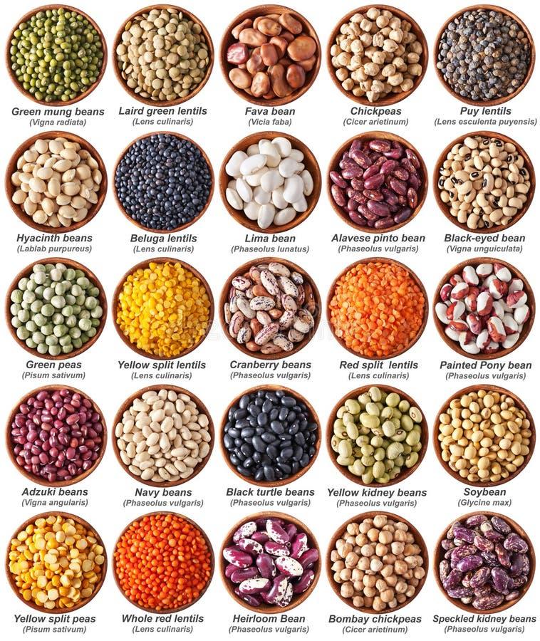在与标签的白色隔绝的豆类的汇集 图库摄影