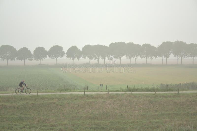 在与树剪影的一有雾的天供以人员循环在背景 免版税库存图片