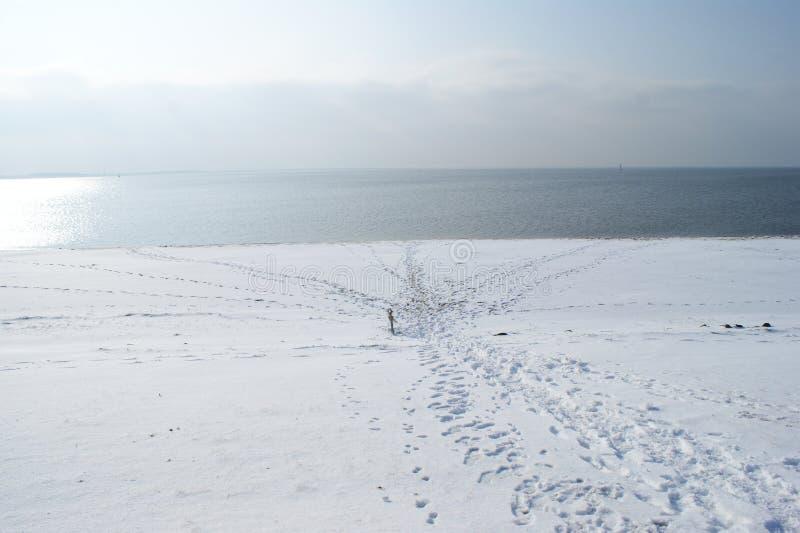 在与脚印的冬天靠岸在雪 免版税图库摄影