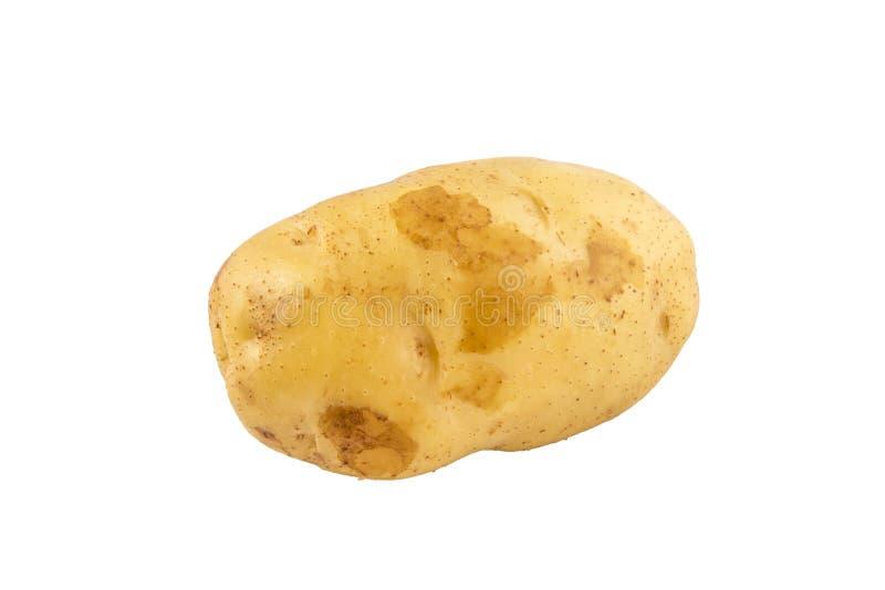 在与裁减路线的白色隔绝的土豆 免版税库存图片