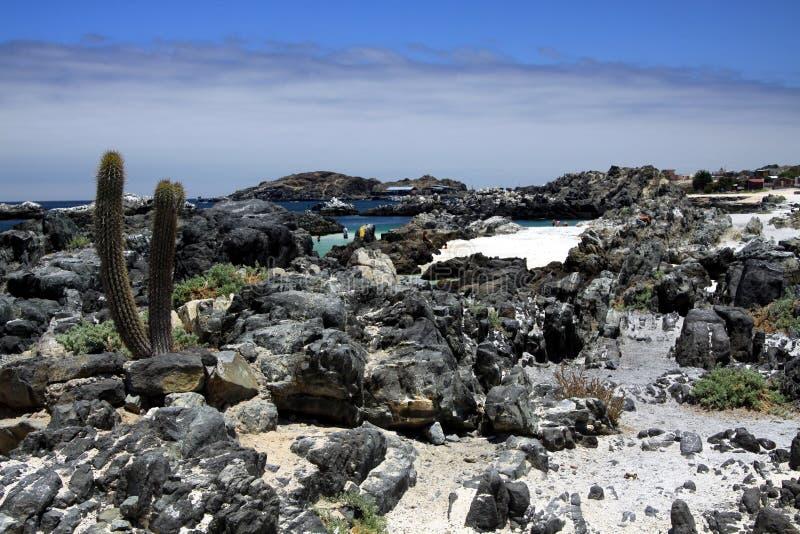 在与高层云的接合的岩石围拢的自然绿松石水池的看法在天际 库存图片