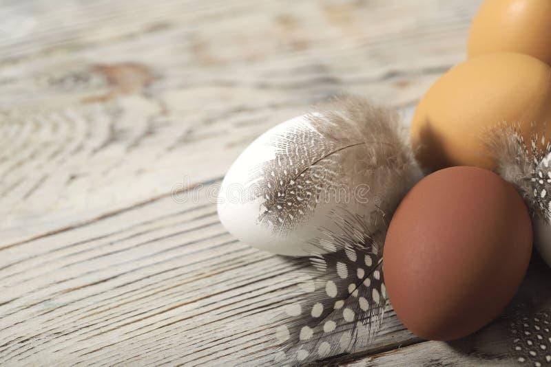 在与鸟呈杂色的羽毛的一个木米黄表面复活节褐色和白鸡蛋  免版税库存图片