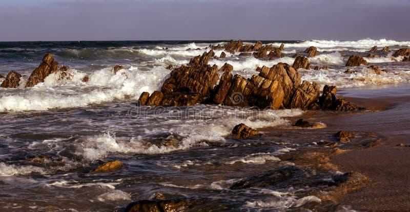 在东开普省海滩的坚固性岩石露出 免版税库存图片