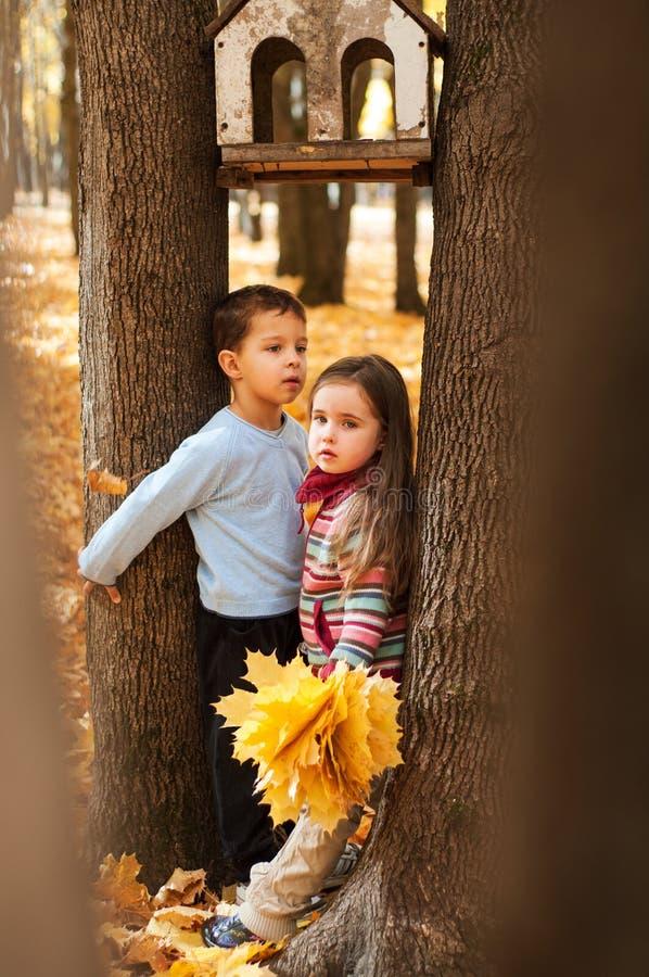 在两棵树之间的沉思孩子立场 免版税库存照片