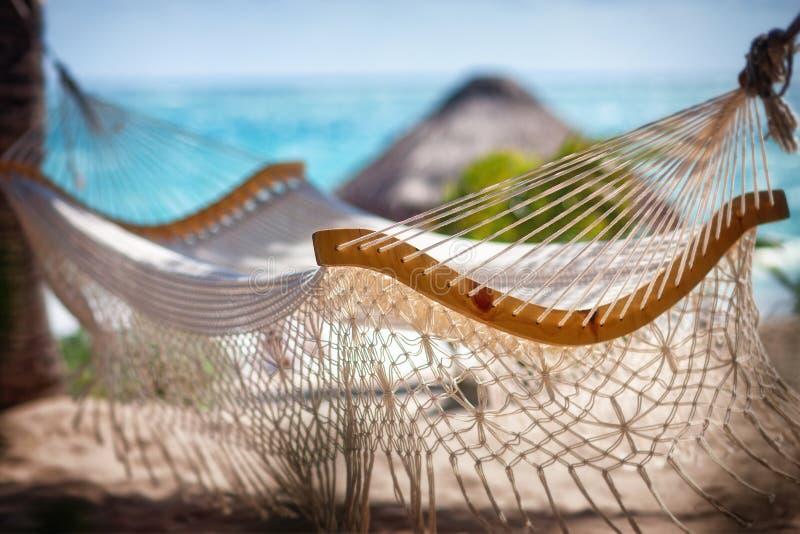 在两棵棕榈树之间的空的吊床在海滩 库存图片