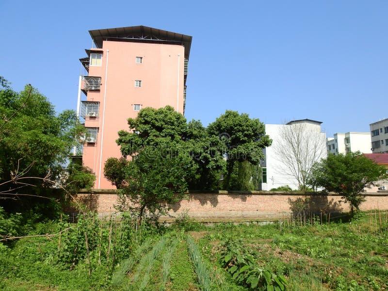 在中国农村的高楼 库存照片