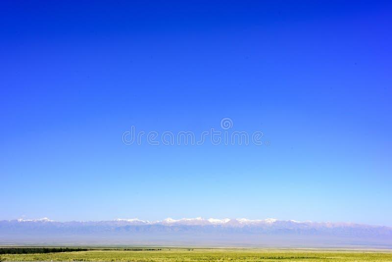 在中国的青海,蓝天、草原和积雪覆盖的山构成一张美好的图片 免版税库存照片