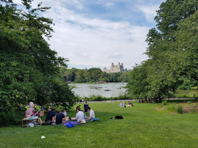 在中央公园的野餐 库存照片