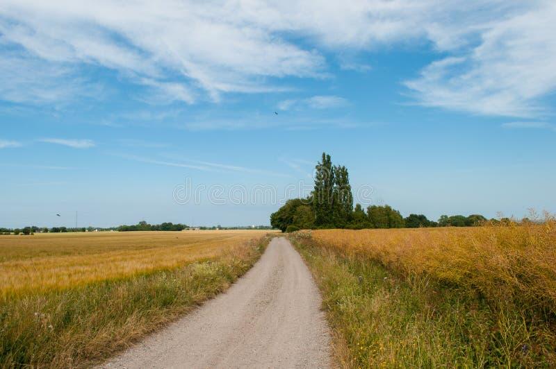 在丹麦乡下的路在星期一海岛上  免版税图库摄影
