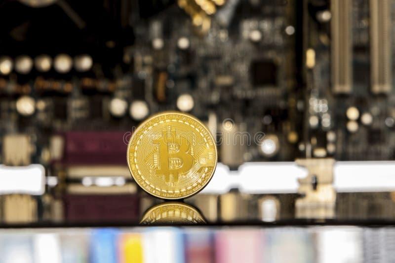 在主板前面的金黄bitcoin 免版税库存照片