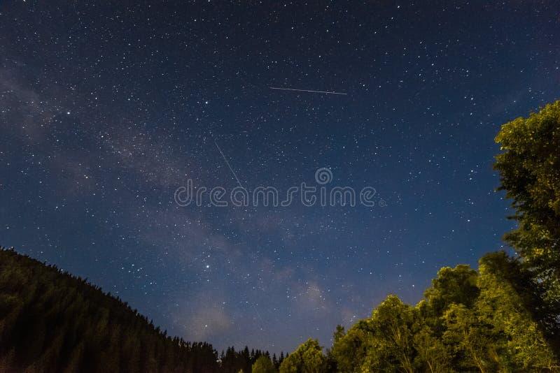 在乌克兰森林的银河 免版税库存图片