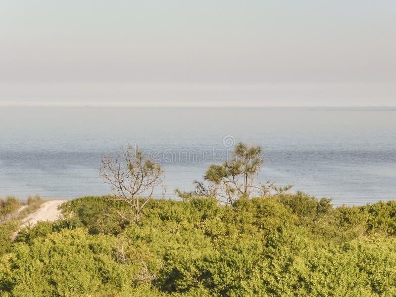 在乌拉圭的海岸的风景 免版税图库摄影