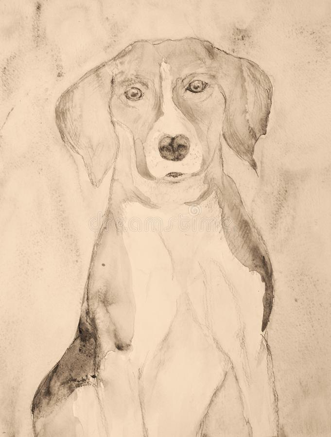 在乌贼属口气的小猎犬画象 向量例证