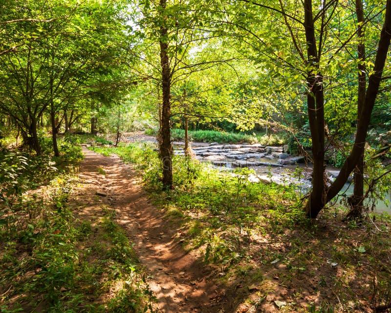在九英里奔跑旁边的一条自然人行道在弗利克公园,匹兹堡,宾夕法尼亚,美国 库存照片