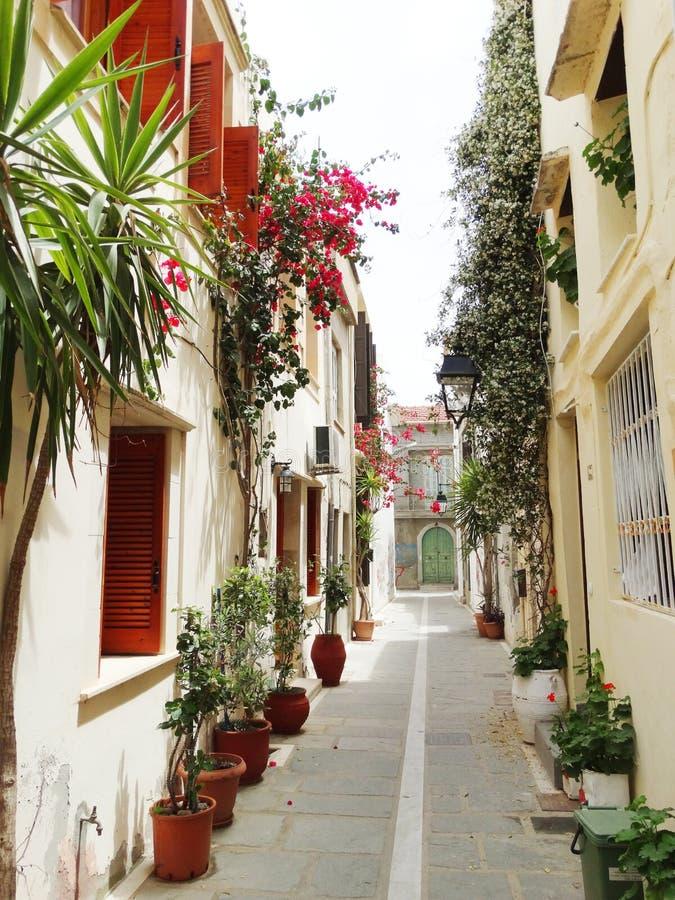 Download 在九重葛中的传统街道在rethymno城市希腊 库存图片. 图片 包括有 布琼布拉, 装饰, 陶瓷, 工厂 - 72357005