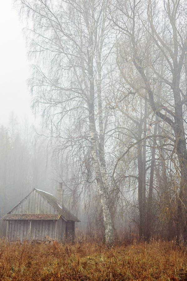 在乡下的有雾的11月天 库存照片