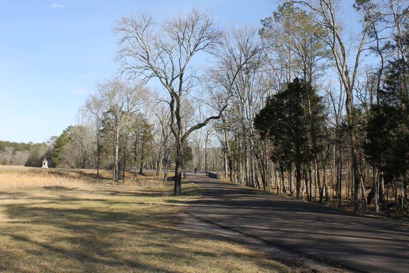 在乡下的美丽的路在冬天 库存图片