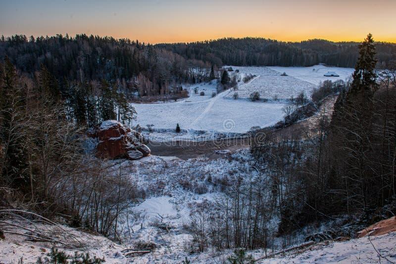 在乡下领域的冬天寒冷的surise和森林 库存照片