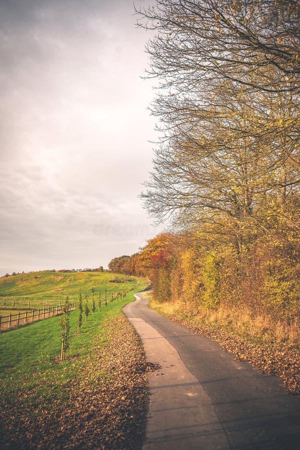 在乡下风景的弯曲的路 免版税库存照片