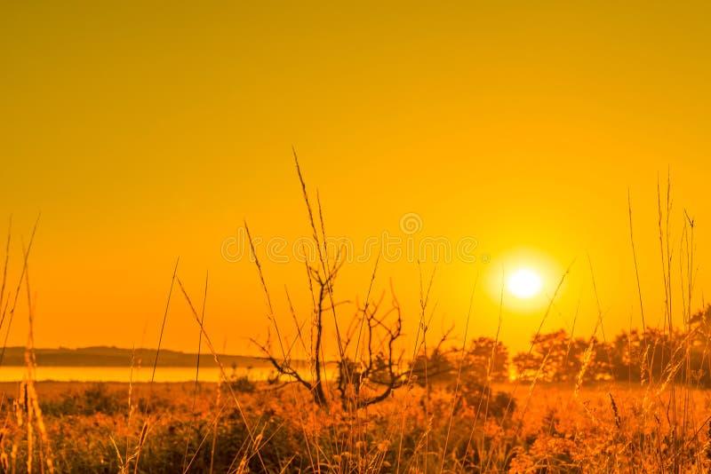 在乡下风景的日出 免版税库存照片