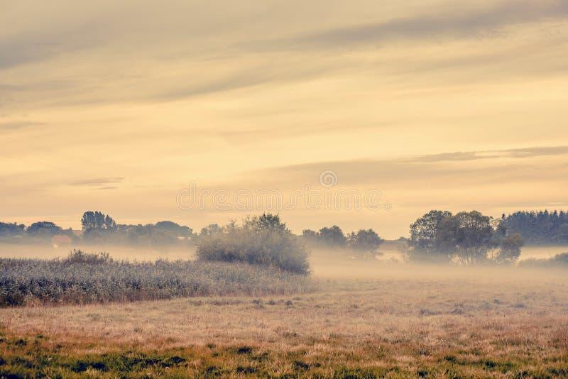 在乡下风景的雾 图库摄影