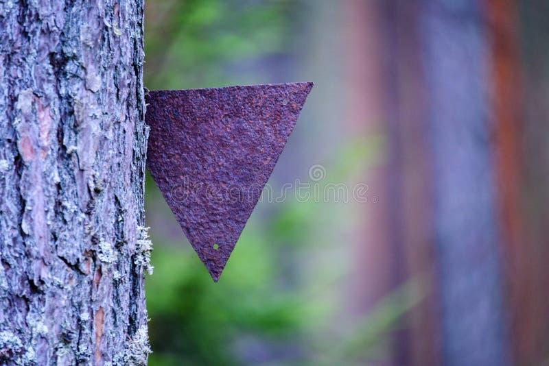 在乡下,细节反弹射击与被困住的金属三角  图库摄影