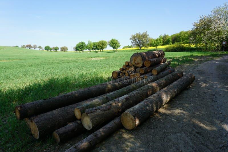 在乡下,草甸,锯木杆,春天风景用木材建造股票 免版税图库摄影