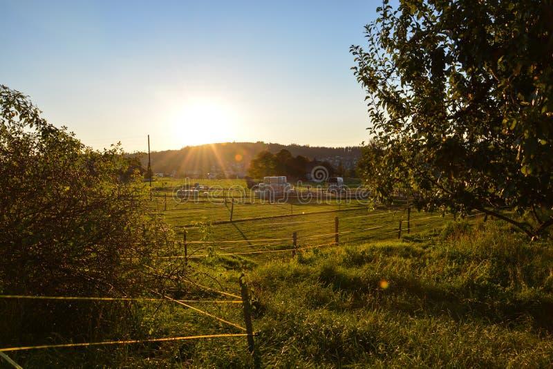 在乡区的好的温暖的日落 库存照片