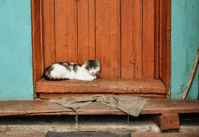 在乡间别墅门廊的逗人喜爱的猫谎言  蓝色乡下空的路场面天空 农夫域生活人倾斜秸杆村庄 免版税库存照片
