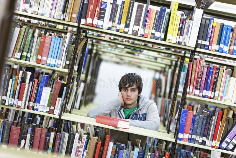在书中的男性大学生在图书馆里 库存图片