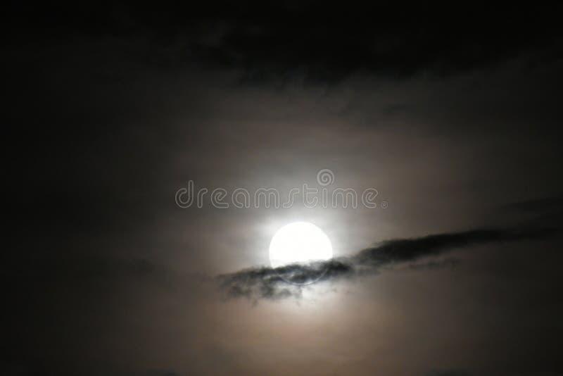 在云彩后的金黄满月与薄雾 免版税图库摄影