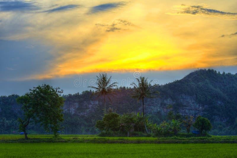 在云彩和小山后的古色古香的美好的日落与绿色植物和树 免版税库存照片