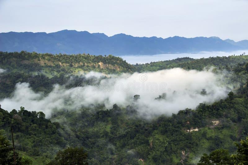 在云彩和雾的树木丛生的山谷在夏天风景自然风景视图期间 免版税库存照片