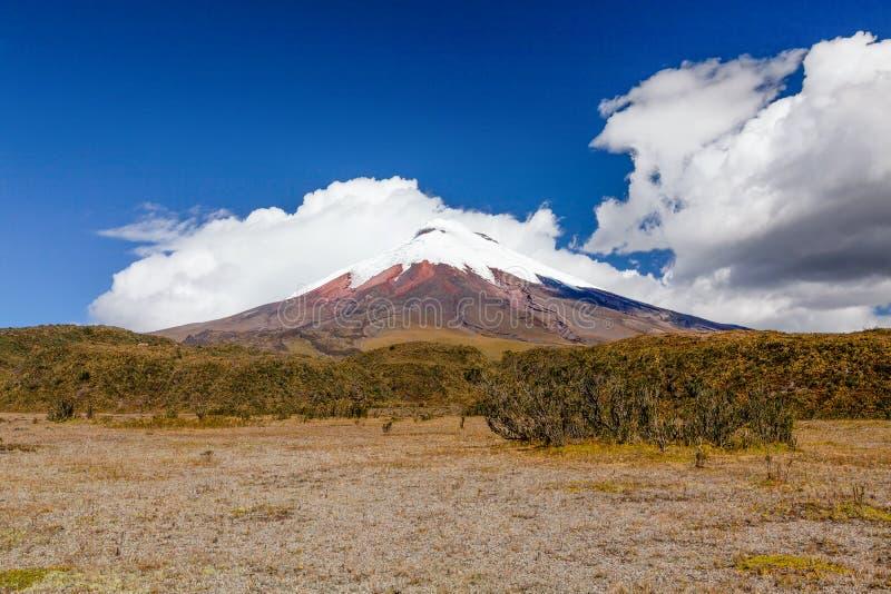 在云彩的科托帕克西火山 库存图片