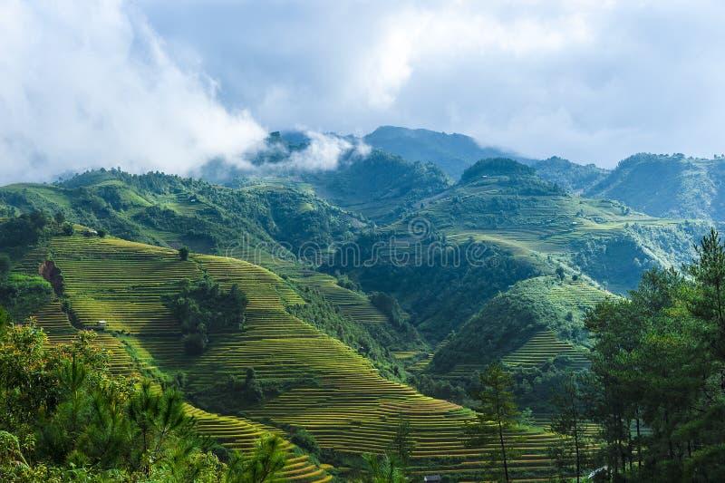 在云彩的米露台的领域小山和山 库存照片