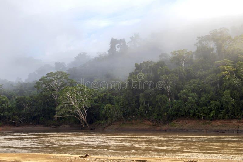 在云彩,亚马孙河盆地,南美洲的绿色雨林山 库存图片