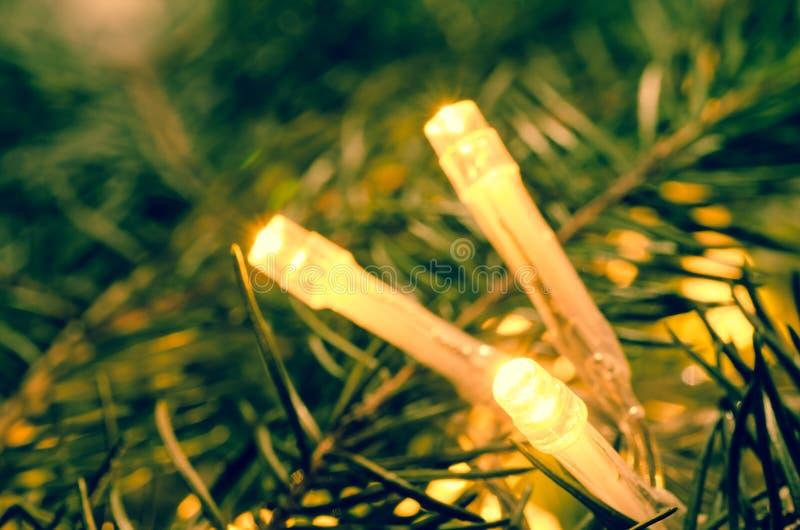 Download 在云杉的枝杈的圣诞灯 库存照片. 图片 包括有 季节性, 季节, 金子, 枝杈, 快活, 圣诞节, 详细资料 - 62529154