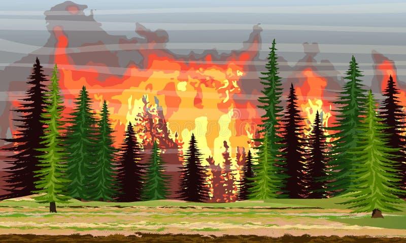 在云杉的森林燃烧的树的火 野火 浩劫 皇族释放例证