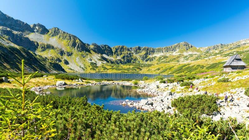 在五个波兰湖谷在Tatra /Tatry山,波兰的夏天视图 免版税库存图片