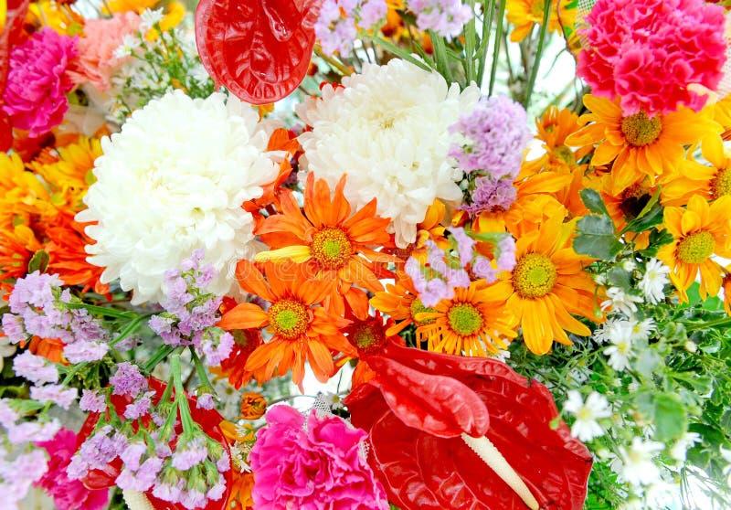 在五颜六色的混杂的花 免版税库存图片