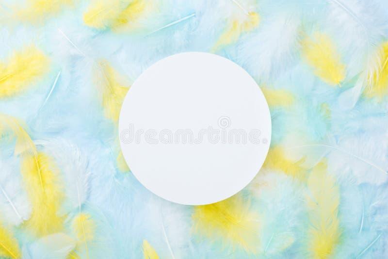 在五颜六色的羽毛背景的白色圆的卡片 时尚柔和的淡色彩样式 免版税库存照片