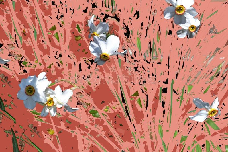 在五颜六色的背景的令人愉快的春天花 向量例证