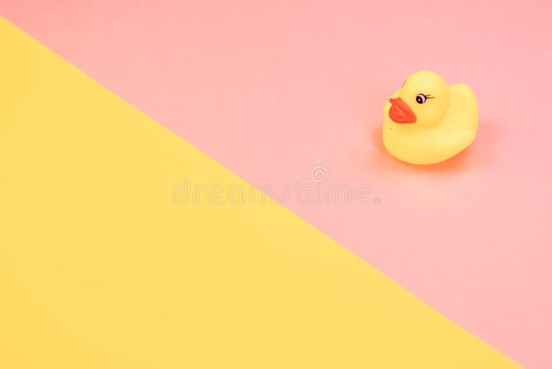 在五颜六色的背景的橡胶浴鸭子 在玩具橡胶鸭子的顶视图 孩子迷人漂浮的玩具戏剧 库存图片
