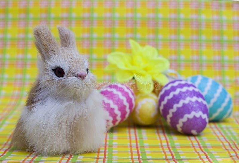 在五颜六色的鸡蛋背景的复活节兔子  库存照片