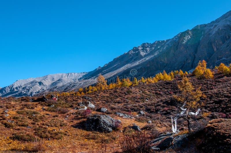 在亚丁自然保护的秋天风景 免版税库存图片