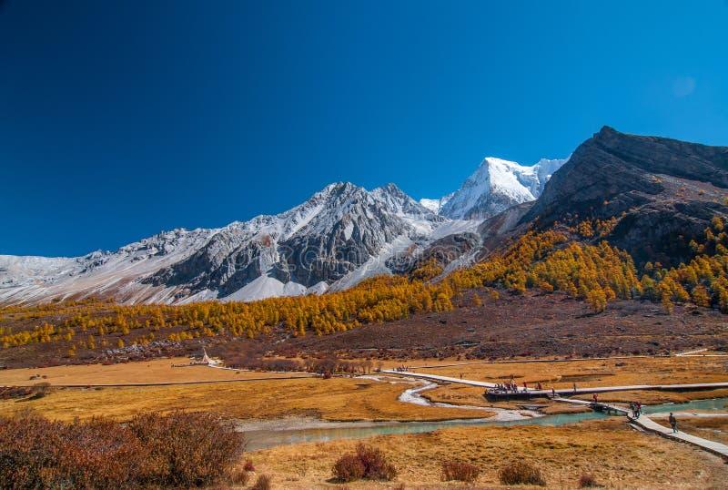 在亚丁自然保护的秋天风景 库存图片